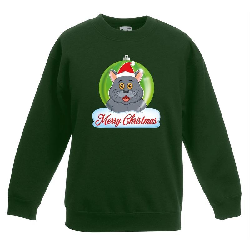 Kersttrui Merry Christmas grijze kat - poes kerstbal groen kinde