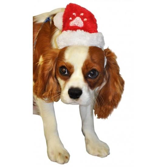 Pluche kerstmuts voor honden of katten